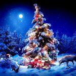 Дед Мороз и Снегурочка. Свободное время 31 декабря 2016 г.